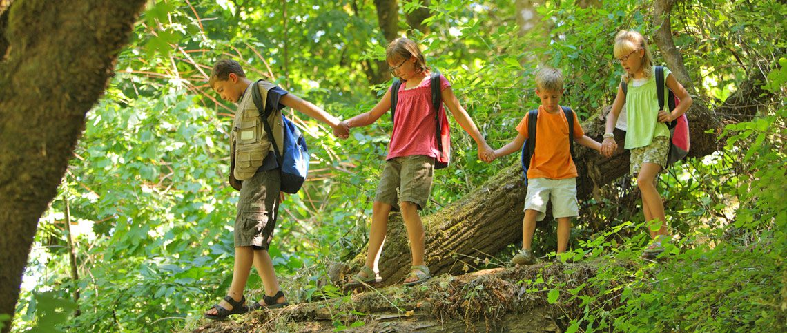 kids holding hands on hiking trail
